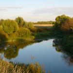Речка Омуть. Рыбалка детства