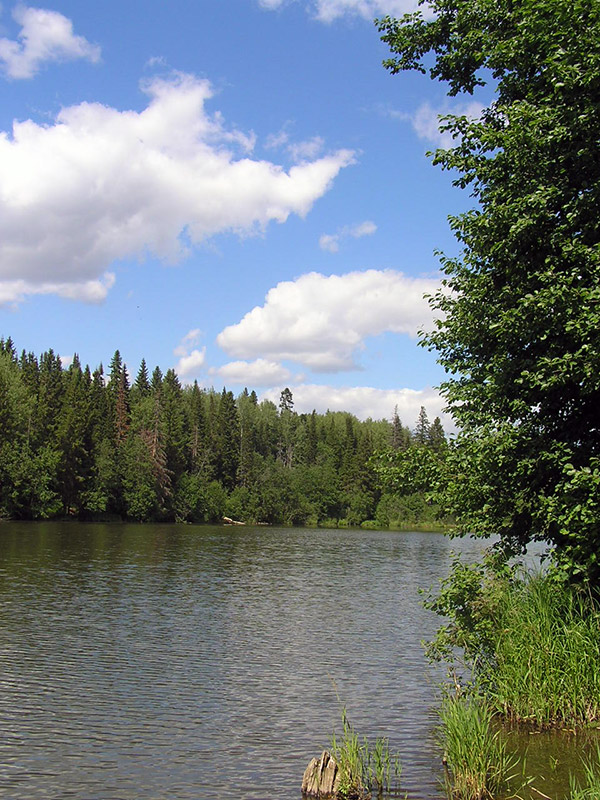 Байкузино пруд