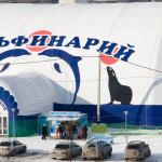 Дельфинарий в Ижевске