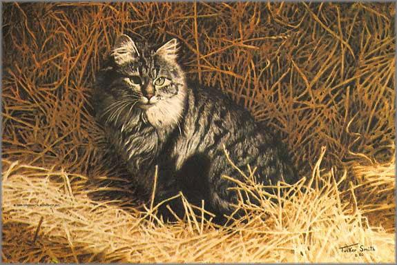 кот на сеновале