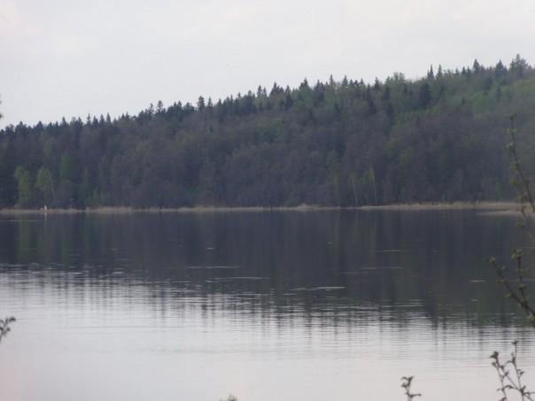 лос остров пруд