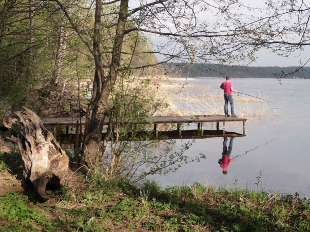 лосиный остров рыбалка
