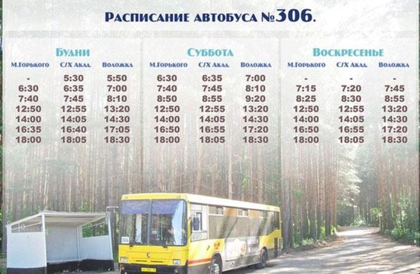сокол расписание автобусов